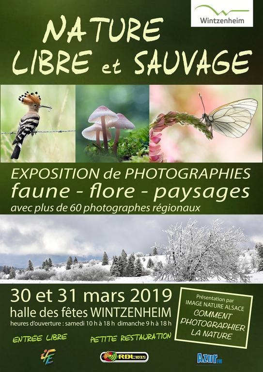 Affiche libres et sauvages 2019