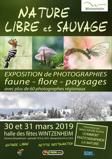 Affiche libres et sauvages 2019 a4