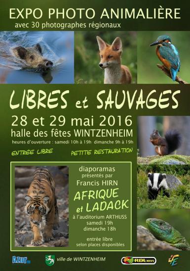 Affiche libres et sauvages