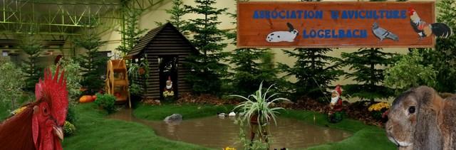 Assosiation d'aviculture de LOGELBACH et environs