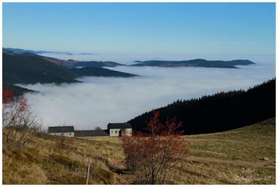 Mer de brouillard vue du Schaeferthal