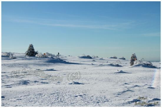 L'hiver le21.01.2012