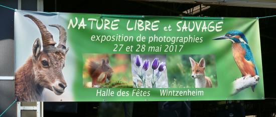 Photo Jean-Luc Syren